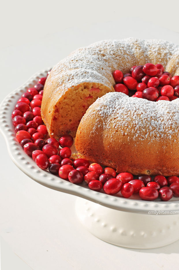 18. Orange-Cranberry-Bundt-Cake-10c
