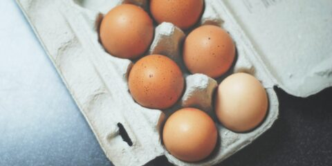 myths about protein