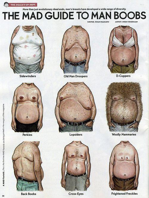 How to get rid of man boobs: the MAD guide to man boobs by Drew Friedman http://drewfriedman.blogspot.co.uk